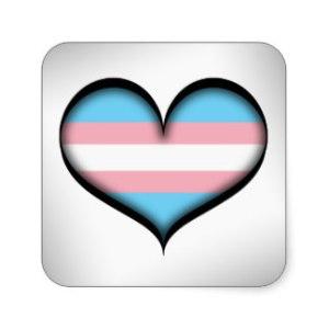 transgender ally